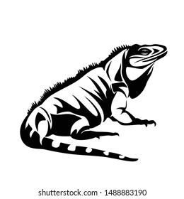 iguana lizard black and white vector outline - pet reptile side view design