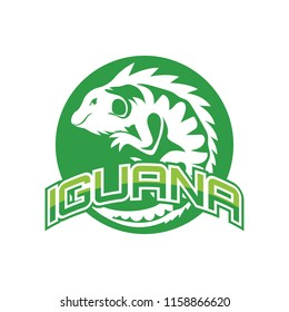 iguana logo for your business, vector illustration