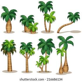 Illustraion of a set of palm tree