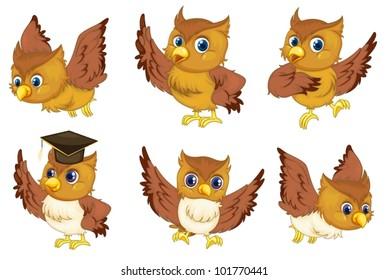 Illustraiton of comical owl on white