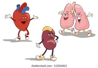 illustrated character set of human internal organs 1