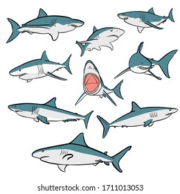 Illustrated graphical set of nine sharks isolated on white background, vector color sharks for multi-purpose