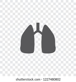 An Illustrated Icon Isolated on a Background - Lungs
