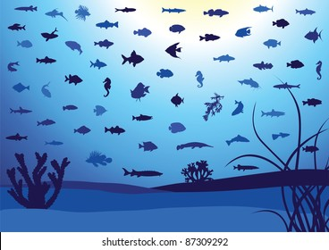 Illustration of 62 fish silhouettes in ocean or aquarium. All objects are isolated and grouped. Colors are easy to adjust.