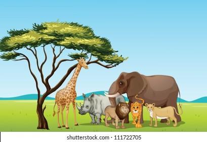 Illustration of African animals in savannah