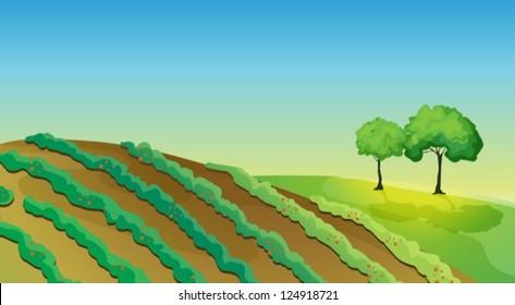 Field Clip Art
