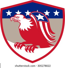 Illustration of a american bald eagle with flag star on wings perching viewed from the side set inside shield crest with stars in the background done in retro style.