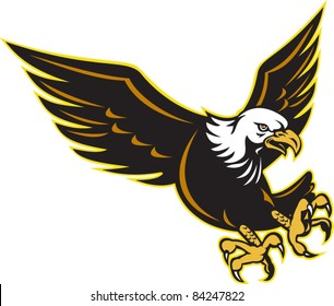 illustration an American Bald Eagle flying about to attack with sharp talons on isolated white background