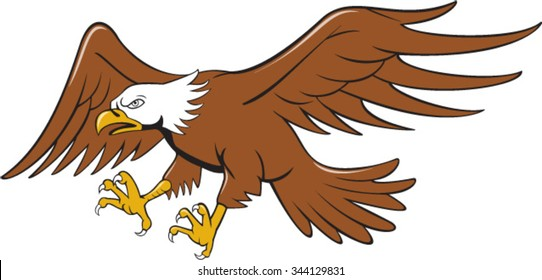 Illustration of an american bald eagle swooping flying viewed from the side set on isolated white background done in cartoon style.