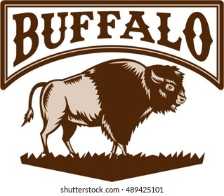 Illustration of an American bison or buffalo viewed from the side set on isolated white background with the word text Buffalo done in retro woodcut style.