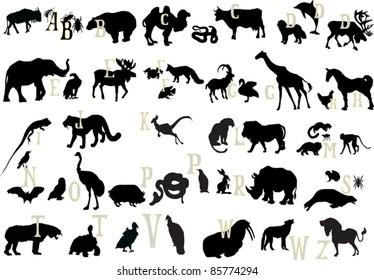 illustration with animal alphabet isolated on white background