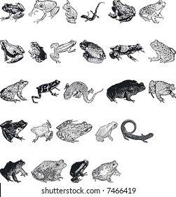 Illustration of Animal Silouettes - Vector