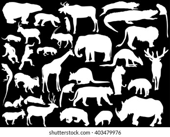 illustration with animals collection isolated on black background