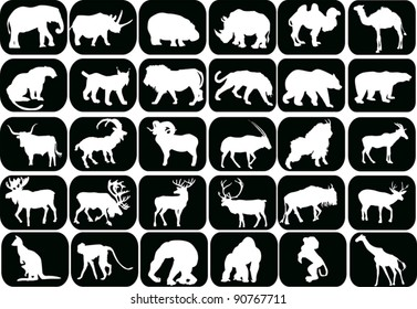 illustration with animals silhouettes collection