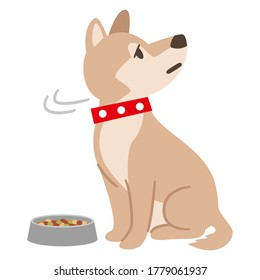 Illustration of an anorexic dog on a white background