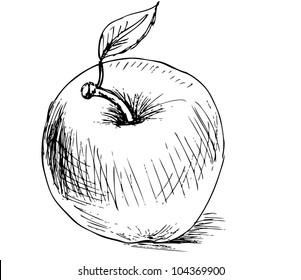 Illustration - apple