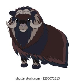 Illustration of an arctic musk ox. Vector maskox clipart on white background. Ancient arctic musk-ox animal.