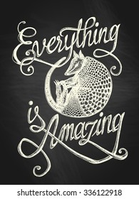 "Illustration of armadillo with ""Everything is amazing"" hand drawn quote, white on the blackboard background"