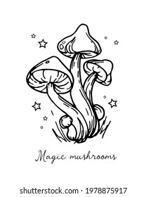 Illustration of autumn forest plants. Graphic vintage mushrooms with stars. Botanical illustrations. Witch mushrooms for Halloween. Graphic vintage doodle illustration with space magic mushrooms. Idea