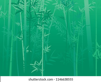 Illustration of bamboo trees, asian forest landscape background.