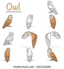 illustration of a barn owl with a variety of movements with a minimalist style and outline. vector