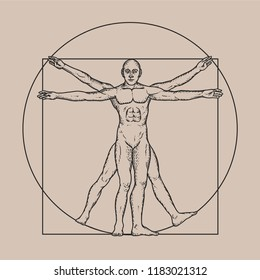 Illustration based on The Vitruvian Man by Leonardo Da Vinci - classic illustration proportion man in vector
