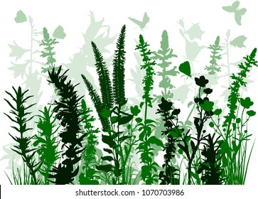illustration with batterflies above green plants isolated on white background