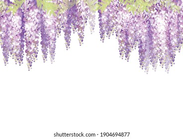 It is an illustration of a beautiful wisteria flower