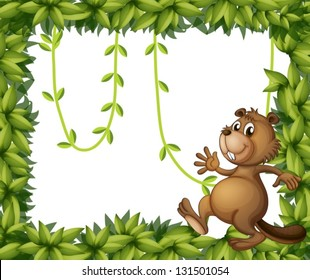 Illustration of a beaver and the empty frame with vine plants on a white background