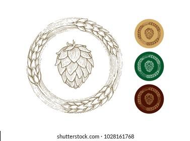 illustration of beer hops with malt, ingredients of popular alcoholic drink, kraft beer, vintage style, vector image,  image collection