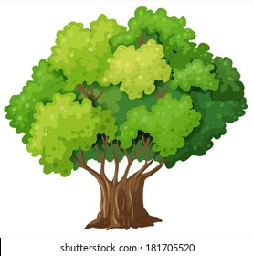 Illustration of a big old tree on a white background