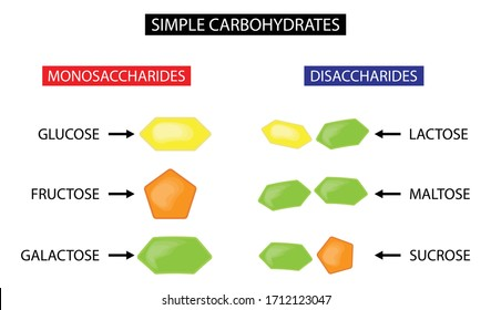 Illustration of biology and food science, Monosaccharides and disaccharides, Simple carbohydrates, Sugar molecules in nutrients