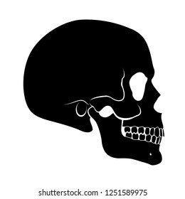 Illustration of Black Human Skull Side View Simple Silhouette on White