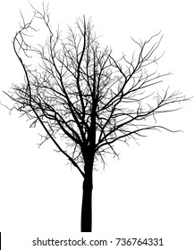 illustration with black large tree silhouette isolated on white background