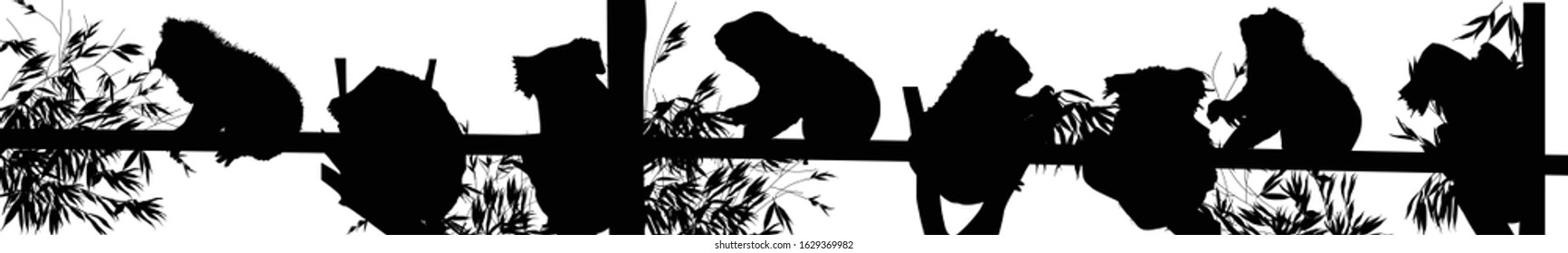 illustration with black silhouettes of koala on white background