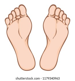 Illustration of body part, plant or sole of foot, Caucasian. Ideal for catalogs, information and institutional material