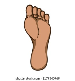 Illustration of body part, plant or sole of right foot, afro descent. Ideal for catalogs, information and institutional material