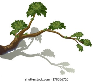 Illustration of a branch of a tree on a white background
