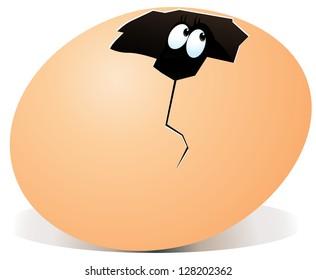 illustration of broken egg with surprise inside
