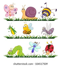 Illustration of bugs on grass