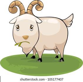 illustration cartoon goat vector