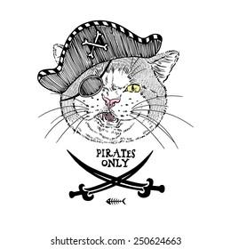 illustration of cat pirate