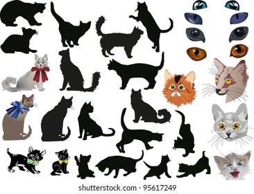 illustration with cats collection isolated on white background