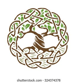 Illustration of celtic tree of life,  color version, vector illustration.