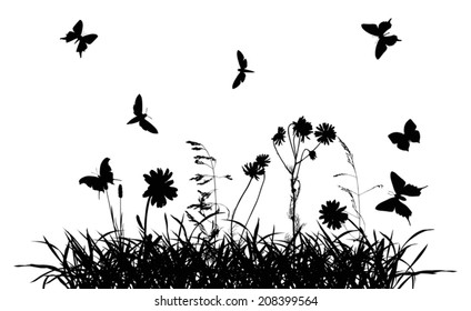 illustration with chamomile flowers in grass silhouettes isolated on white background