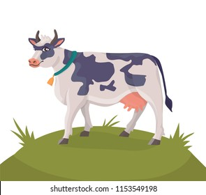 Illustration of cheerful cow in a collar with a bell on a green meadow. Vector isolated farm animal in cartoon style for your design