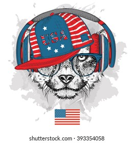 Illustration of cheetah in the glasses, headphones and in hip-hop hat with print of USA. Vector illustration.