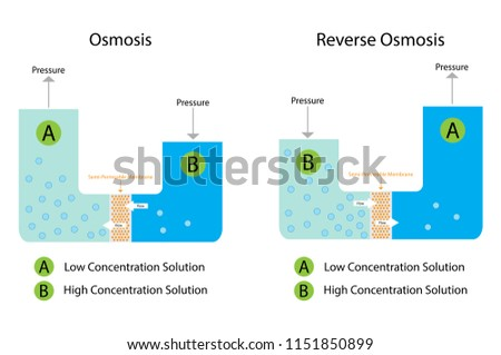Illustration Chemistry Osmosis Reverse Osmosis Diagram Stock Vector
