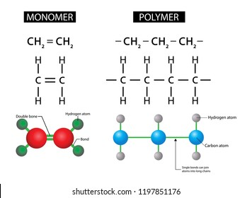 illustration of chemistry, Polymers and Monomers diagram