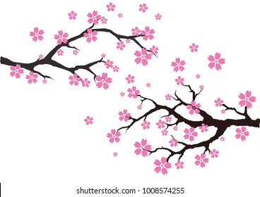 фотообои An illustration of cherry blossom tree